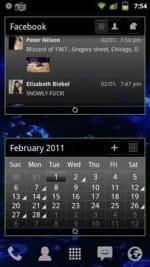 Liquid Gingerbread Scrollable FaceBook and Calendar Widgets