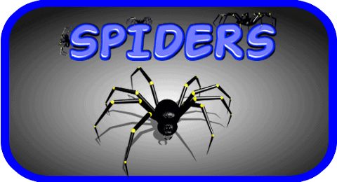spiders-android-game