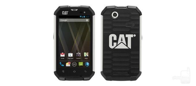 cat-big