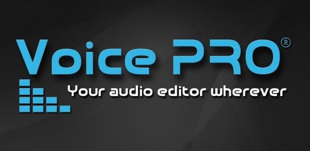 скачать программу Voice Pro - фото 2