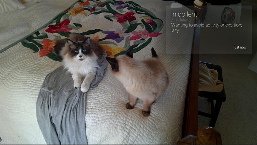 Screenshot from 2013-09-09 16:00:10