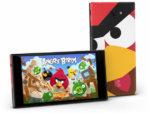Jolla_Angry_Birds_1_610x458