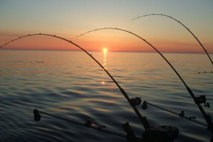 Featured: Top 10 Best Android Fishing Apps