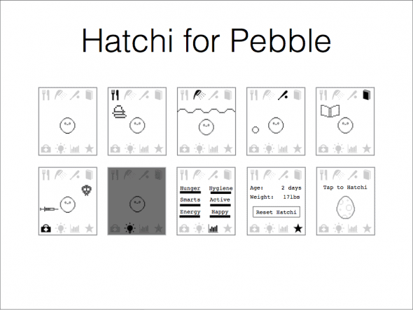 Hatchi-on-Pebble