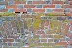 bricks slr