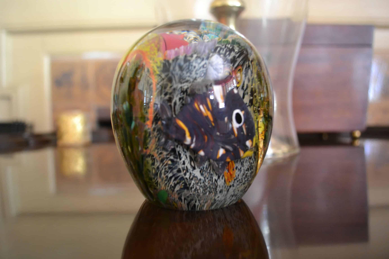 glassbulb slr