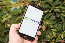 Study: Customers Trust Telus More Than Rogers & Bell