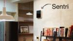 sentri_on_wall