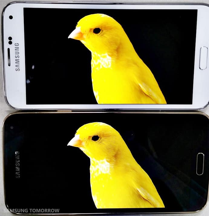s5-vs-s5-lte-a-display-2
