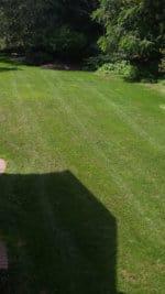 G3 Bright Shadow Yard 1
