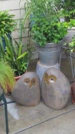 G3 Owls 1