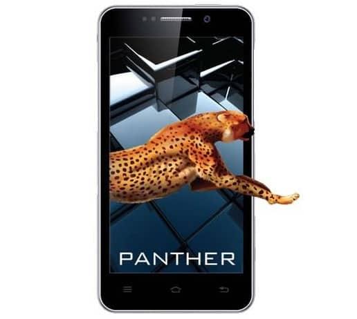 iBall-Andi-5K-Panther
