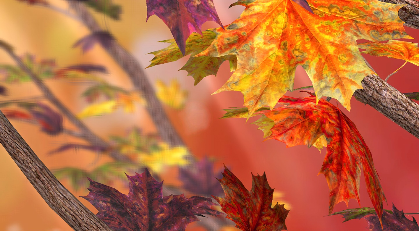 Top 11 autumn live wallpapers for android for Where to get wallpaper