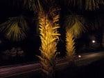 Meizu-MX4-Camera-Night-5