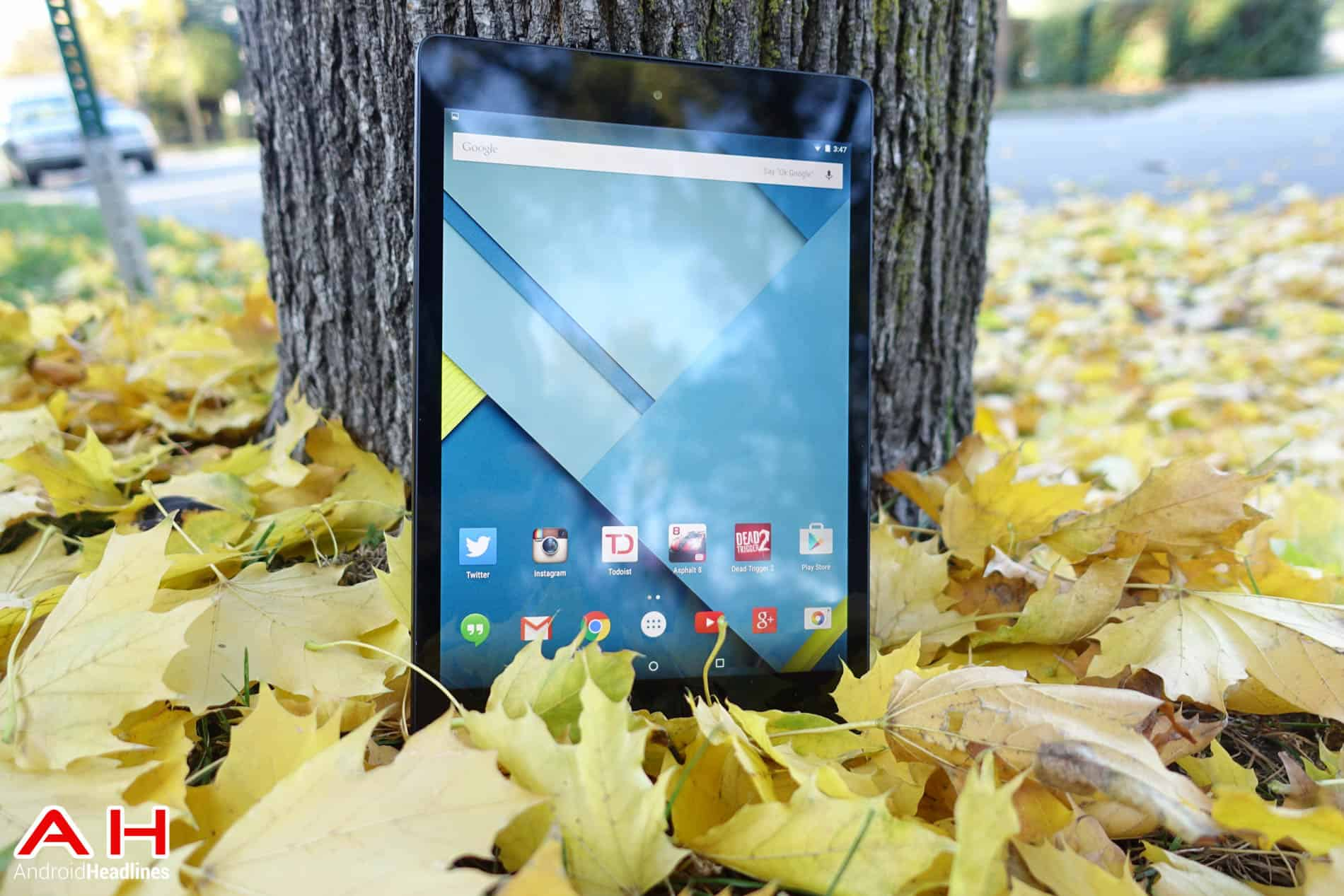 Nexus-9-review-Leaves-AH-11