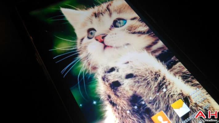 Featured: Top 10 Android Apps For Cat Lovers