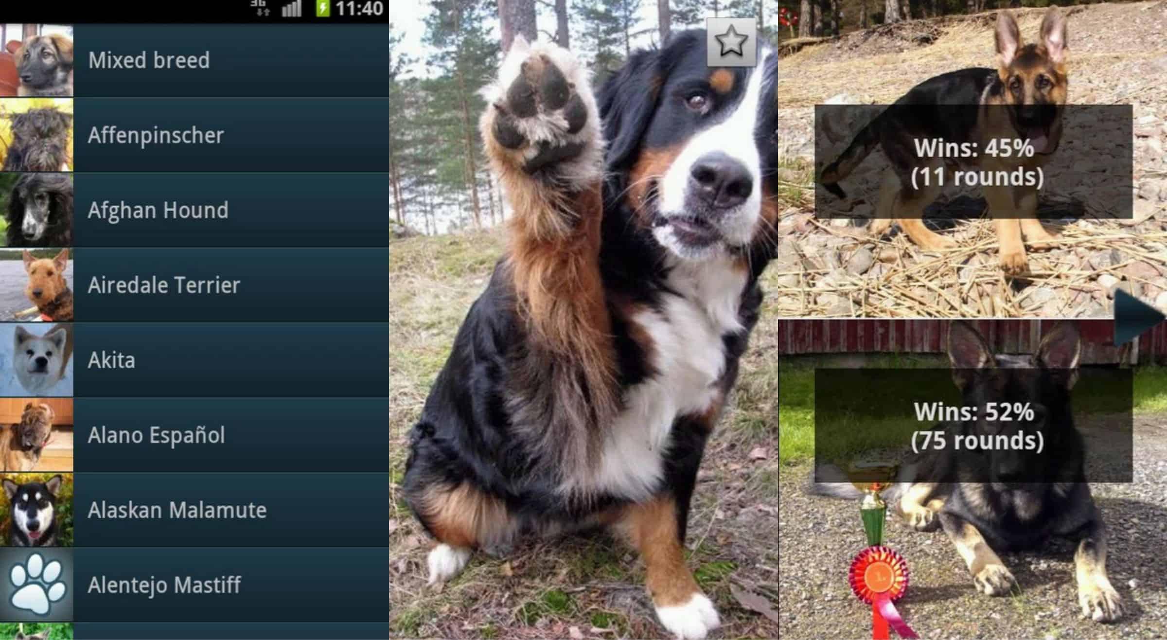 DogBreeds.jpg