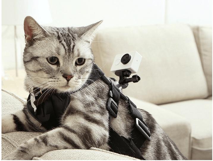 Xiaomi Yi Action camera 5