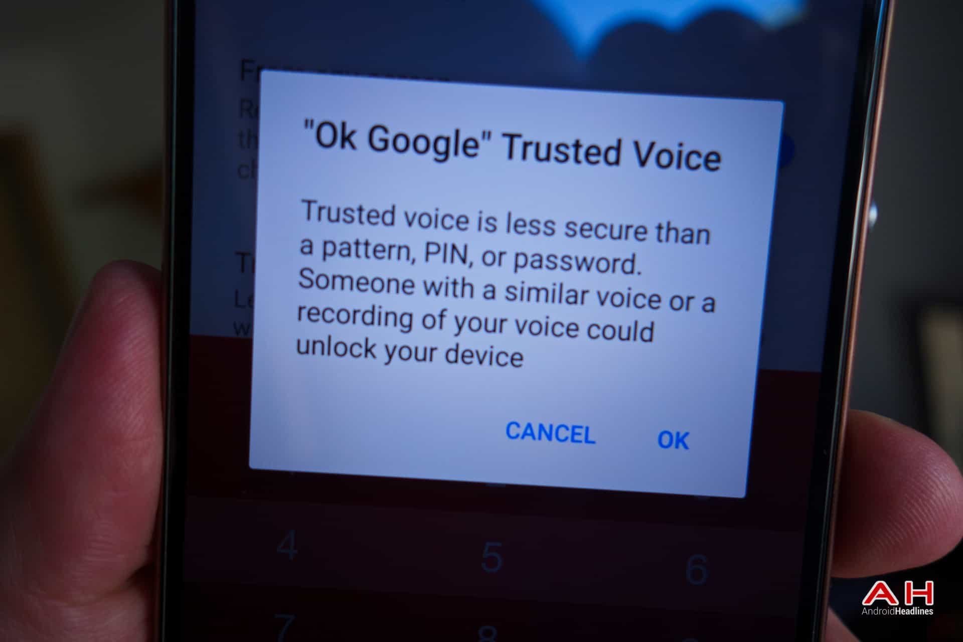 AH Trusted Voice-1