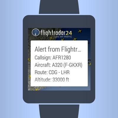 flight wear