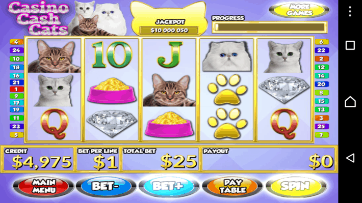 Casino Cash Cats