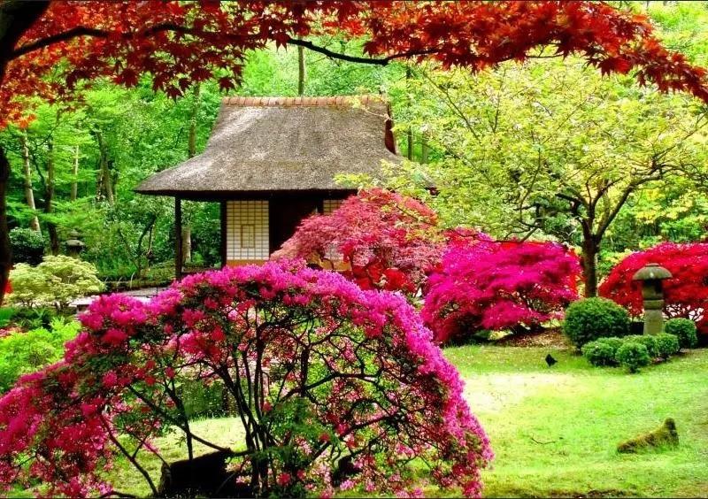 100+ gardens