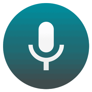 no3 voice icon