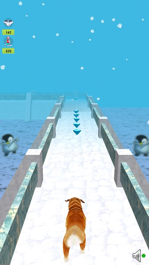 Temple Dog Run