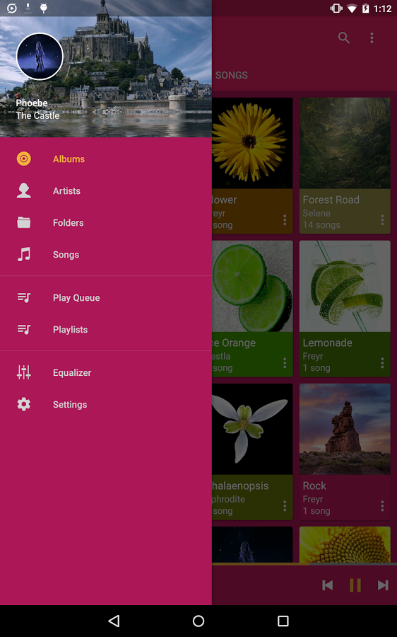 Pulsar Music Player official image_11