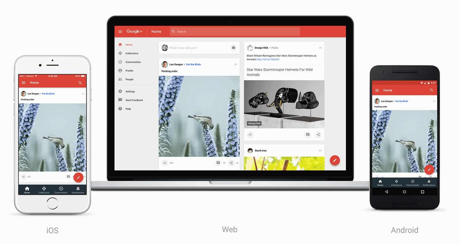 new Google +