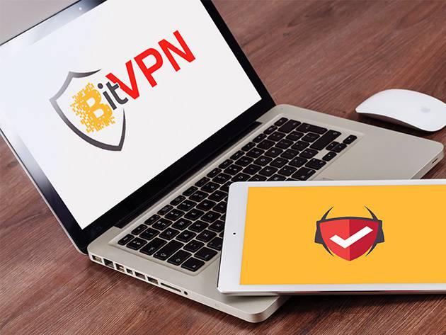 bitvpn