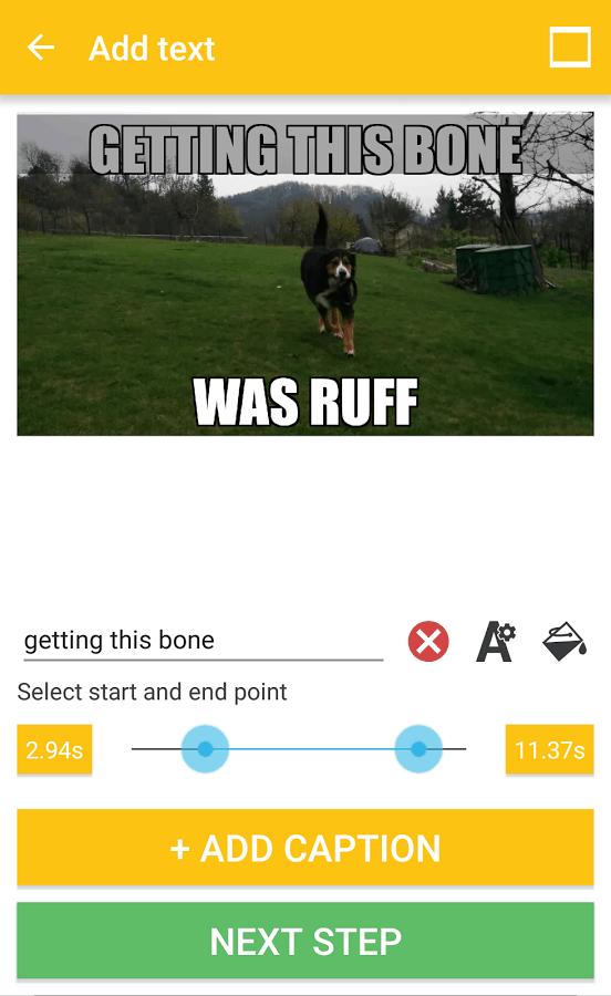 Vide & GIF Memes