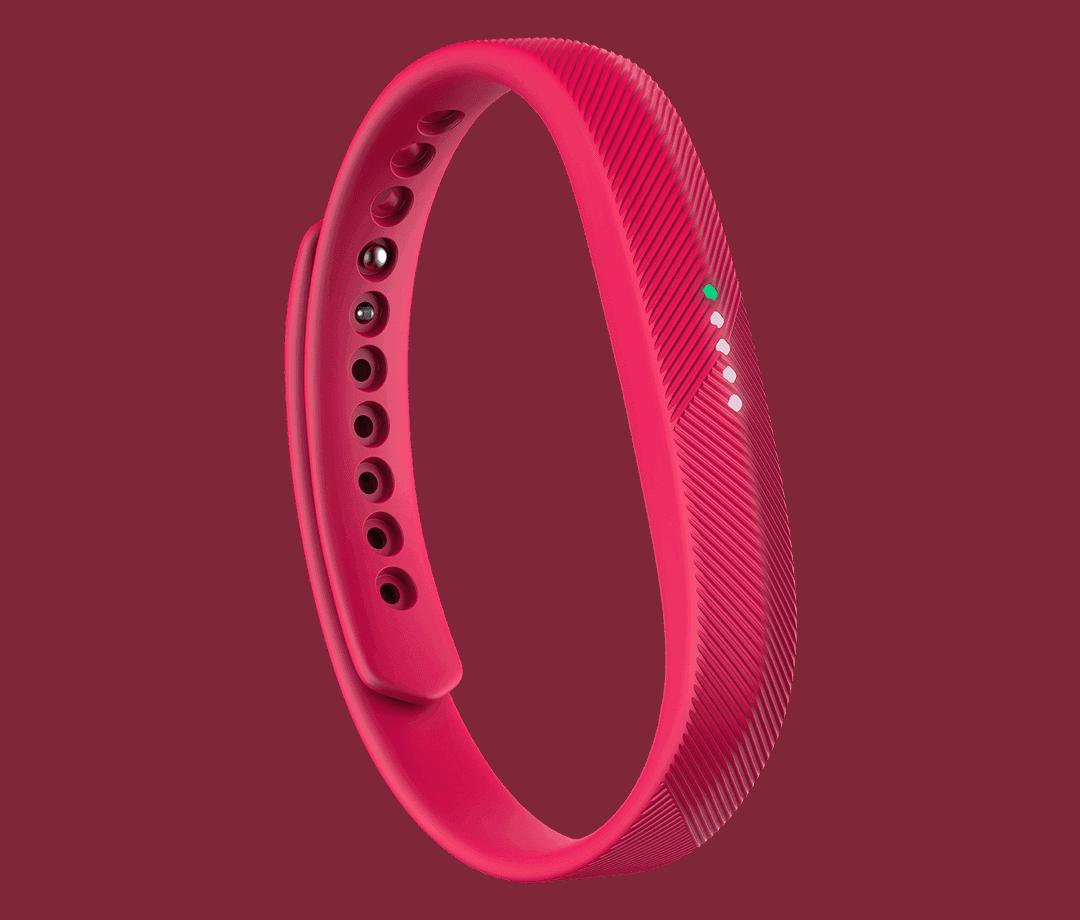 Fitbit Flex 2 03