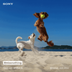 Sony Xperia X pet social post 3