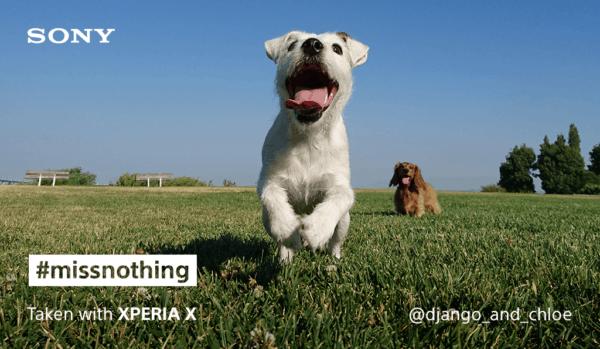 Sony Xperia X pet social post