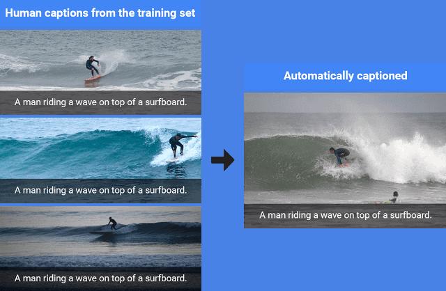 Google AI Photo Recognition 1