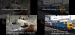 Google AI Photo Recognition 2