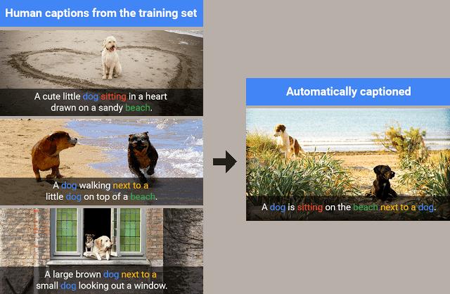 Google AI Photo Recognition 3