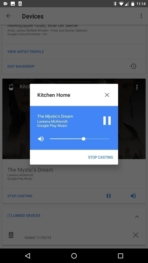 Google Home AH NS app music 3