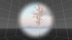 Daydream Elements 6