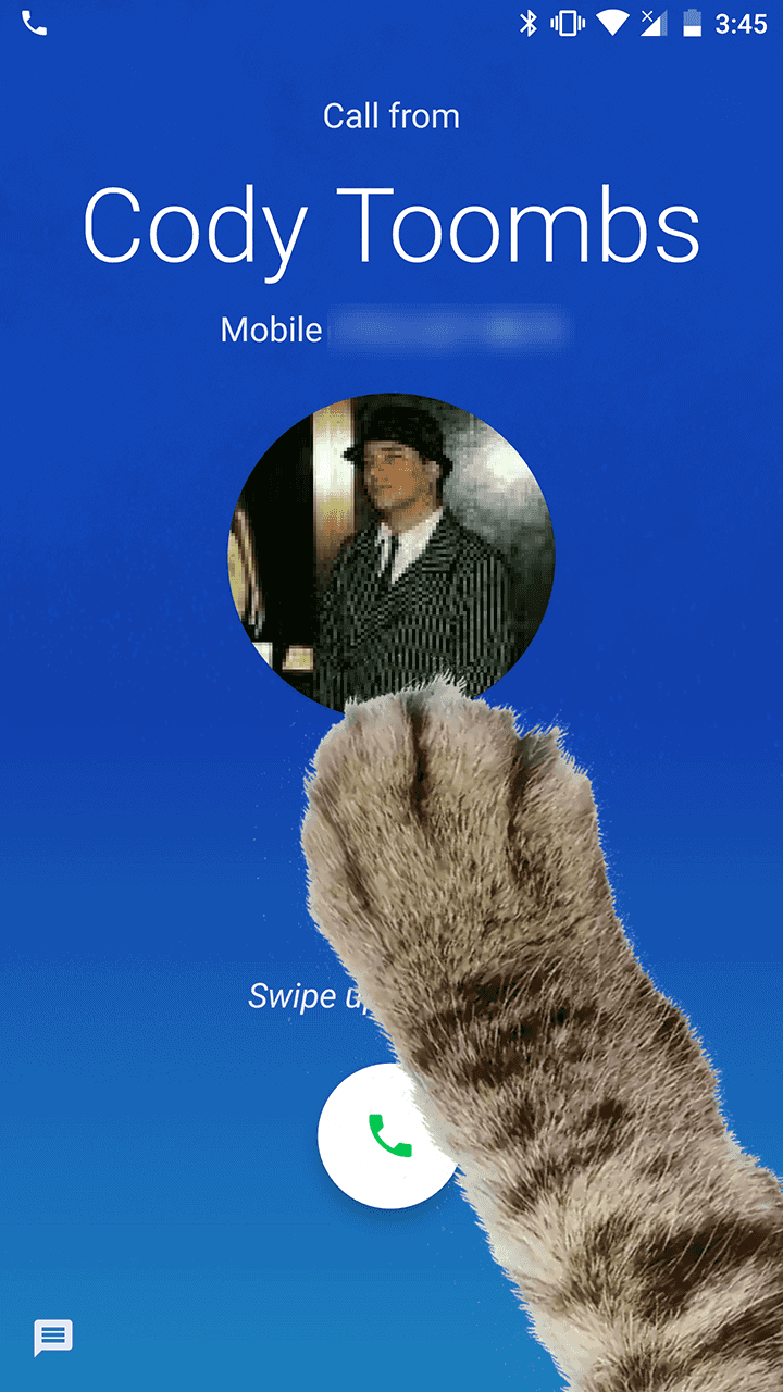 Google Phone Paw Mode AP 2