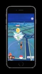 Pokemon GO Raids 12