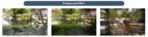 Galaxy Note 8 Camera Leak GalaxyClub 4 4
