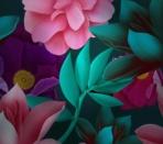 Huawei Mate 10 wallpaper 10