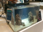 Samsung Upcycling Fish Care Service