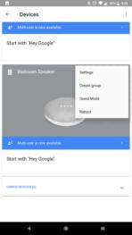 Google Home Mini AH NS Screenshots devices group