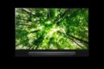 LG 2018 TV SIGNATURE G8 2010x1334