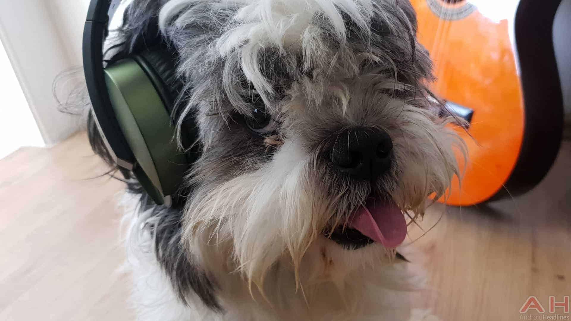 Focal Listen Wireless Chic Headphones AH 8