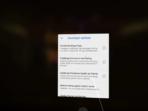 Google Daydream AH NS Screenshots dev options 01