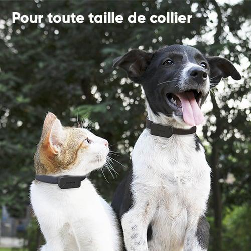 Pet tracker invoxia 3
